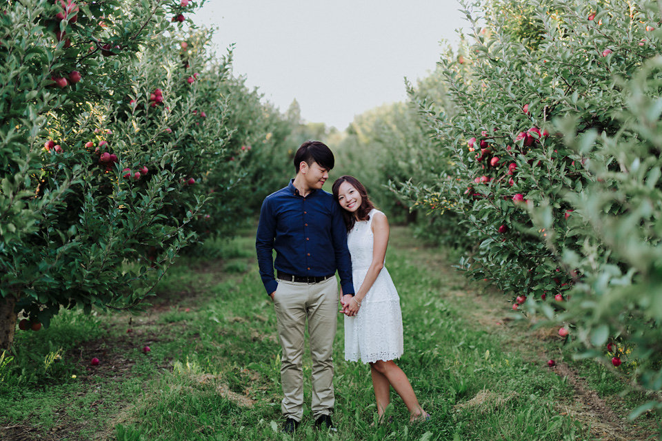 apple-orchard-waterloo-engagement19